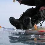 Астраханские раскаты Каспия – сезон зимней рыбалки для настоящих мужчин
