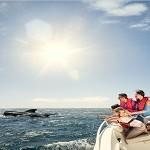 Новогодние каникулы на Канарах: TOP-10 интересных мест