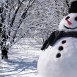 В январе состоится Всемирный день снега