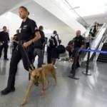 Пассажиры рейса Вена — Стамбул сдали в багаж пулемет