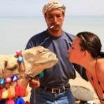 Россиянам не рекомендовано покидать курортные зоны в Египте