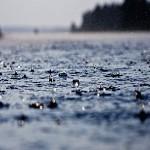 В Сочи ожидаются ливневые дожди