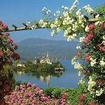 DSBW приглашает провести майские праздники в Европе