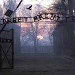 В Эстонии открылась юмористическая выставка о Холокосте