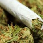 Курение марихуаны легализовано в Вашингтоне