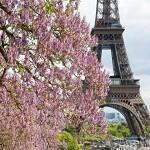 Подарите себе французские каникулы от туроператора DSBW