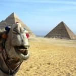 Некоторые магазины Египта начали принимать рубли