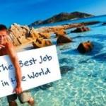 Студентка из Словении получила работу мечты
