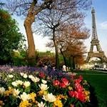 Каникулы мечты во Франции от DSBW