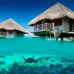 Остров бора-бора фото