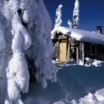 В Финляндию вернулась зима