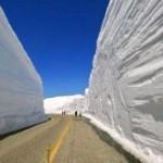 По снежному коридору будет курсировать автобус с панорамной крышей