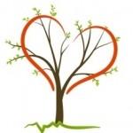 В Турции появится «Дерево жизни» — символ надежды для всех больных