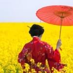 Определена лучшая страна Азии для туризма