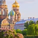 Фестиваль уличной еды на колесах пройдет в Санкт-Петербурге