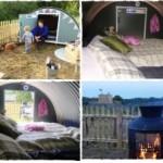 Британские отельеры предлагают туристам пожить в свинарнике