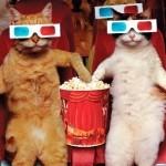 Кинотеатр для домашних животных может появиться в Москве