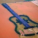 """Лес в форме гитары """"Лесная гитара"""" (Forest Guitar), Аргентина"""