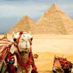 Россияне в Египте постояли за себя