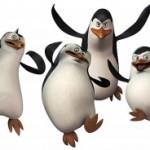 Пингвины пытались сбежать из зоопарка в Дании
