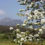 За отдых на Северном Кавказе придется доплатить
