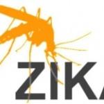 Роспотребнадзор рассказал, как защищаться от вируса Зика