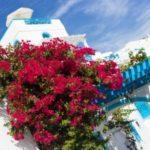 Греция выдает россиянам 4,5 тысяч виз в день. 99 процентов из них — мультивизы