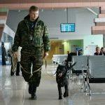 Эксперт: «Мир не избавится от терроризма в аэропортах, пока…»