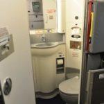 По нужде: самолет экстренно сел в Москве из-за переполненных туалетов