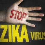 Роспотребнадзор предупредил о распространении вируса Зика в Сингапуре