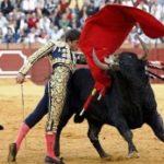Каталония сняла запрет на корриду