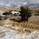 Число жертв наводнений в Египте превысило 20 человек
