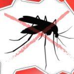 Таиланд предупредил об опасности малярии