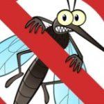 Лихорадка чикунгунья распространяется в популярных у россиян странах
