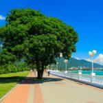 Отдых в Краснодарском крае — удобно и просто