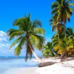 Доминикана рассчитывает науспешный сезон