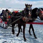 Наповерхности озера Чилдыр запустили конные туры