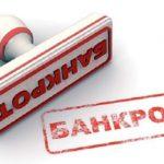 Разработчик «Электронной путёвки» подал иск обанкротстве