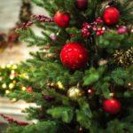Мандарины попятницам и«Тайный Санта»— туроператоры рассказали освоих новогодних традициях