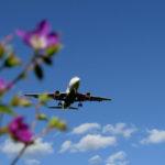 Исследование: самые недорогие весенние путешествия поРоссии