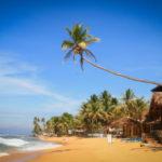 МИД: туристам на Шри-Ланке следует сохранять бдительность